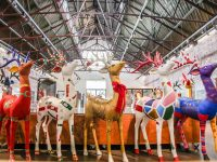 Go Forth Stirling Launches 2019 Reindeer Trail